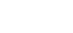 לוגו לבן ראש בריא